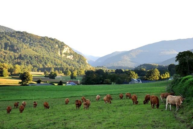 Vallée de Neste depuis Izaux