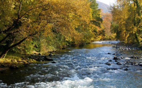 La Rivière Neste