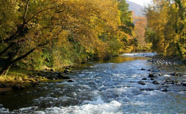 La rivière de la Neste