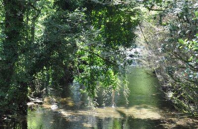 Rivière de l'Arros